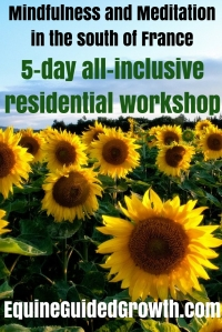 5-day-mindfulness-and-meditation-workshop-in-the-south-of-france