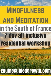 7-day-mindfulness-and-meditation-workshop-in-the-south-of-france