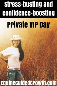 stress-busting-and-confidence-boosting-private-vip-day