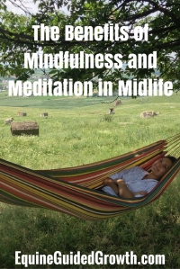 the-benefits-of-mindfulness-and-meditation-in-midlife